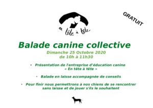 Balade canine collective GRATUITE!